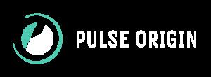 Pulse-Origin Logo